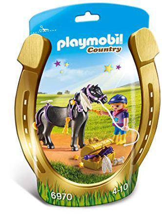 6970 playmobil