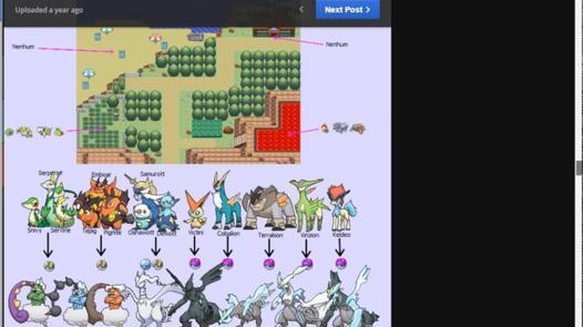 age pokemon