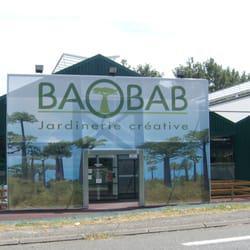 baobab mont de marsan