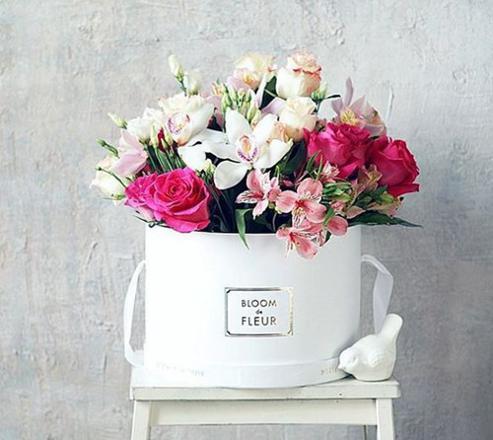 bloom fleurs