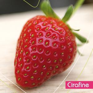 categorie de fraise