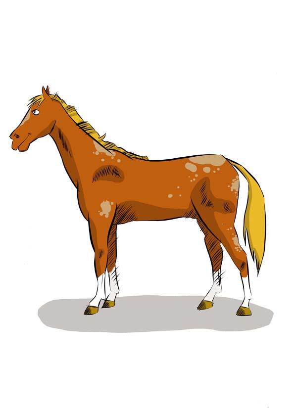 dessin cheval couleur