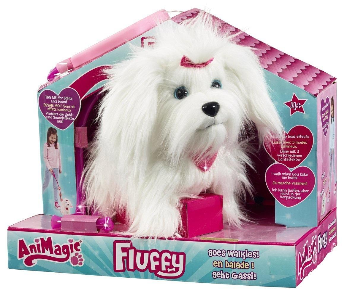 fluffy chien