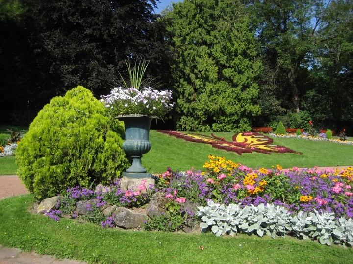 jardin aux fleurs