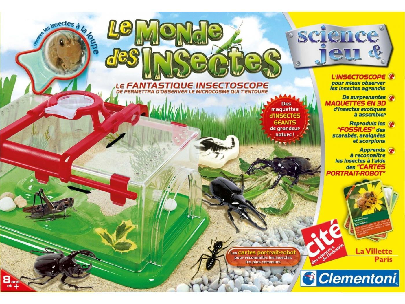jeux d insecte