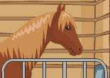 jeux de cheval de garçon
