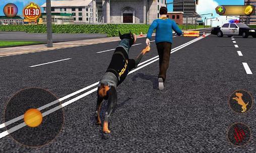 jeux de chien police