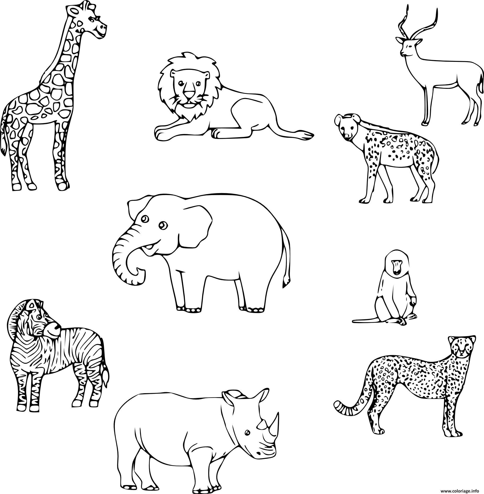 jeux de coloriage animaux gratuit