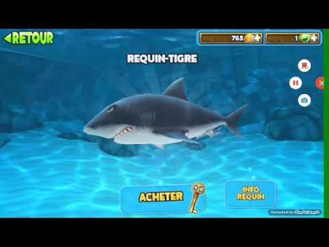 jeux requin