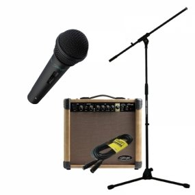 micro et ampli pour chanter