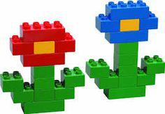 modele construction duplo