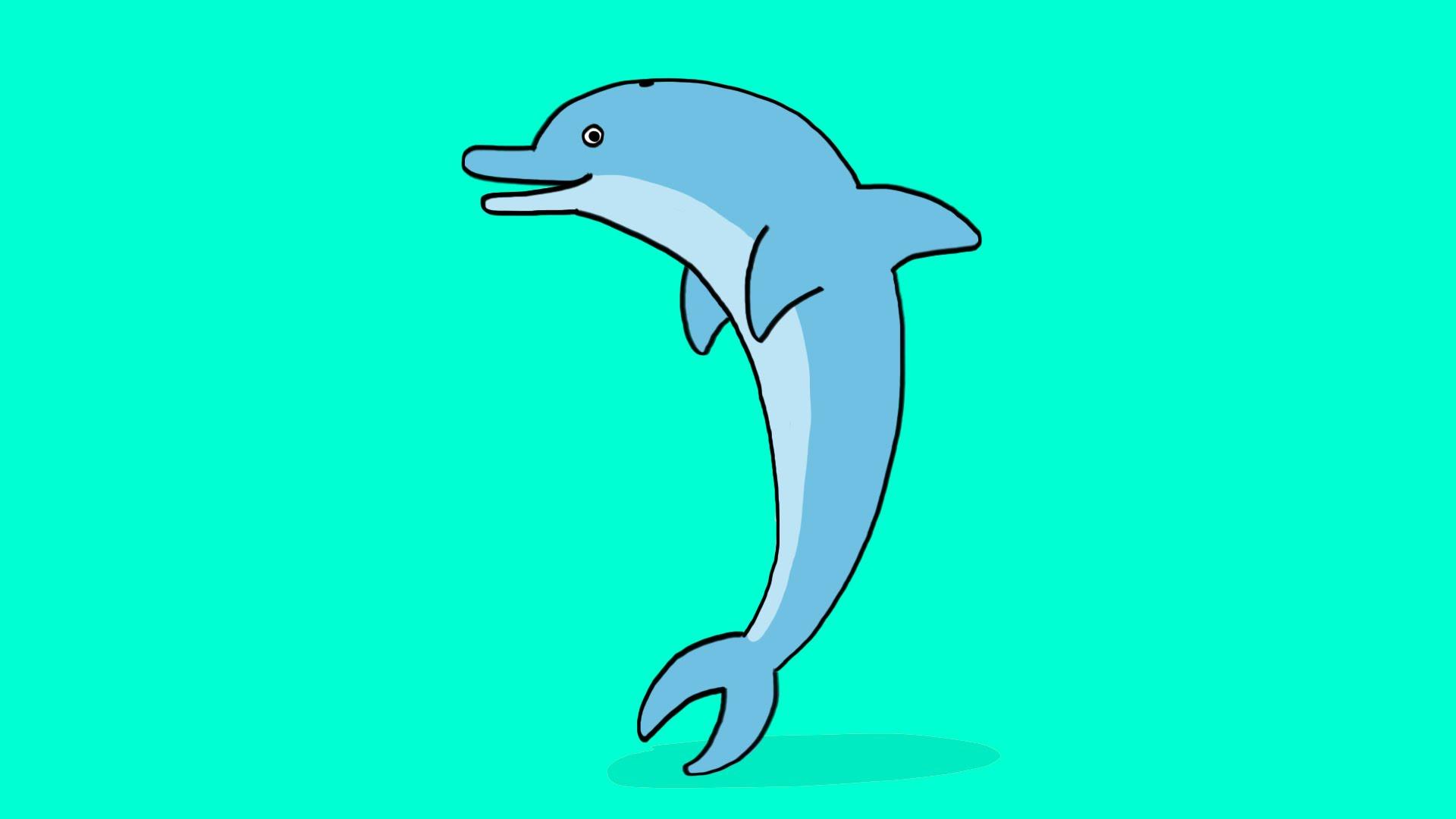 modèle dessin dauphin