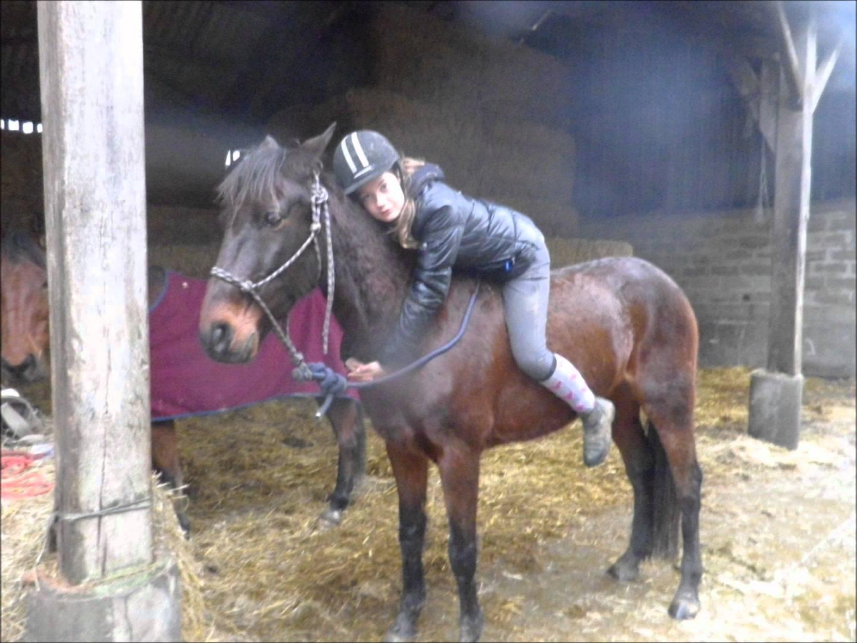 mon cheval com