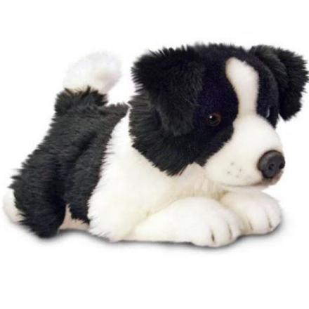 peluche border collie