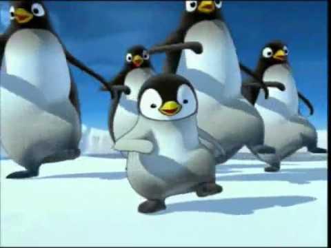 pingouin animé