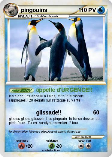 pingouin attaque 2
