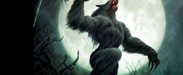 recherche loup garou