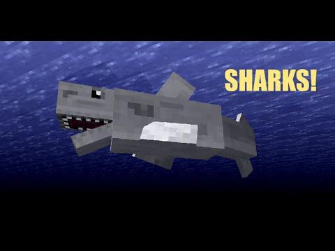 requin dans minecraft
