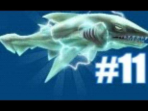 requin electrique